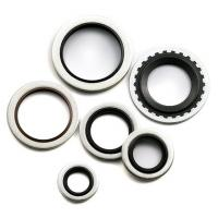 Wholesale Silicon Carbide (Sintered SiC&Reaction Bonded SiC) Seals at Metric Bsp Self Centering from china suppliers