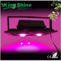 Quality Waterproof 100w Cob Led Grow Light For Cucumber Pepper Tomatoes , Plant Grow Lights for sale