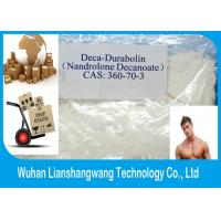 Wholesale Deca - Durabolin Nandrolone Decanoate USP Labs Steroid Powder Nandrolon Decanoate from china suppliers