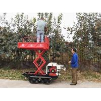 Wholesale Crawler type dumper with lift container from china suppliers