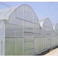 Buy cheap Anti Fly Net from wholesalers