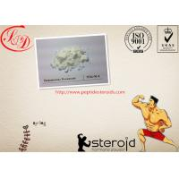 Wholesale Body Building Steroid Powder Testosterone Decanoate/Testosterone Deca CAS 5721-91-5 from china suppliers