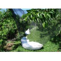 Wholesale Professional Plastic Anti Hail Netting for Fruit Tree Shade Nets Multi Color Customized from china suppliers