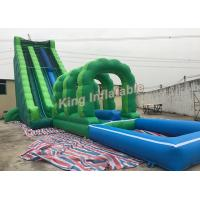Water Toys For Grown Ups : Attractive commercial outdoor giant long green blow up