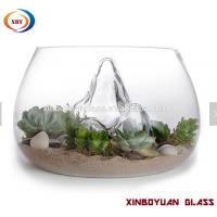 Wholesale Clear Desktop Round Glass Vases Fish Bowl ,glass terrarium for plant from china suppliers