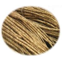 Wholesale Fresh Burdock from china suppliers