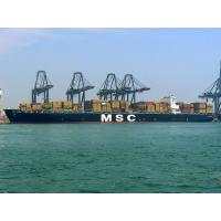 Wholesale LCL FCL Ocean Freight Services Direct Logistics From Shenzhen To Tunis / RADES from china suppliers