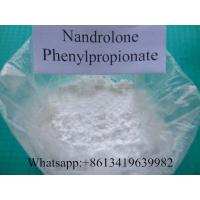 Wholesale Nandrolone Phenylpropionate NPP Durabolin Nandrolone Steroids For Bodybuilding from china suppliers