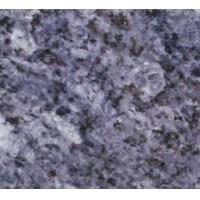 Wholesale Blue Galaxy Granite,Blue Galaxy Granite Tile,Blue Galaxy Granite Slab,Blue Galaxy Granite Countertop from china suppliers