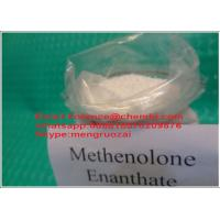 Wholesale Anabolic Injectable Steroids Methenolone Enanthate Primobolan For Gym Users from china suppliers