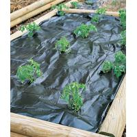 Wholesale Hot selling high quality pp weed mat from china suppliers