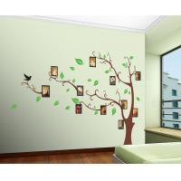 Wholesale Creative Tree And Photo Removable Wall Stickers Vinyl For Lounge from china suppliers