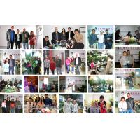 Guangzhou Shengjie Artificial Plants Ltd