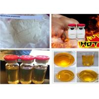 Wholesale Muscle Growth Steroids Nandrolone Propionate CAS 7207-92-3 Nandro for Bodybuilding from china suppliers