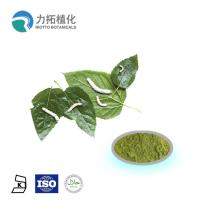 Wholesale Mulberry  leaf extract powder / DNJ Weight loss activities against a-glycosidase from china suppliers