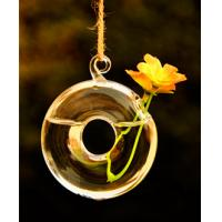 Wholesale Handblown glass pendants,handblown glass hanging vases,DJ-10008 from china suppliers