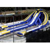 Wholesale Inflatable Triple Hippo Water Slide Largest Inflatable Slide For Outdoor Commercial from china suppliers