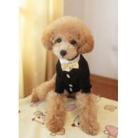 Wholesale Fashion 100% Cotton Yellow XL, L, XS Personalised Dog Hoodies from china suppliers