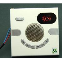 Wholesale FM playing speaker withTF card MP3 from china suppliers