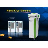 Quality Whole Body Cryolipolysis Slimming Machine , Cool Shaping Cellulite Reduction Machine for sale