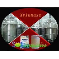 Wholesale White Powder Xylanase Enzyme In Food Industry Slight Fermentation Odor Szym-XY100BA from china suppliers