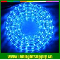 Wholesale Led flexible led strip 1/2'' 2 wire rope duralights with low volt 24/12v from china suppliers