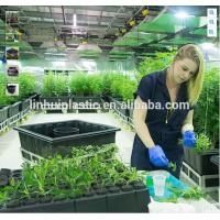 Wholesale Large plastic growing trays plastic black plastic plant pots with wheels from china suppliers