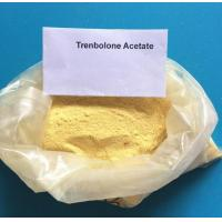 Wholesale CAS 10161-33-8 Trenbolone Steroids , Injectable Parabolan Trenbolone Enanthate for Bodybuilding from china suppliers