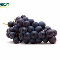 Wholesale Blood Circulation Black Currant Fruit Extract Powder , Antioxidant Food Supplements from china suppliers