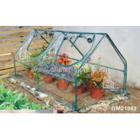 Wholesale Steel Tube Greenhouse-Cold-Frame Series-92X92X93CM-PVC from china suppliers