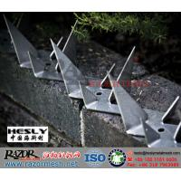 Wholesale 304SS Razor Wall Spikes, Steel Fence Spike (China Wall Spikes Exporter) from china suppliers