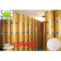 Wholesale White To Creamy Powdered Enzyme Lipase In Food 30000u/g Szym-LIP30BA from china suppliers