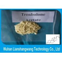 Wholesale 99.5% Yellow Parabolan Trenbolone Powder , Trenbolone Acetate Steroid For Muscle Enhancement from china suppliers
