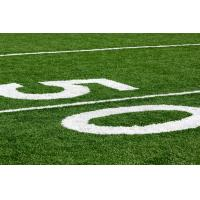 Wholesale Monofilament Artificial Sports Turf  for sports field  / garden / playground from china suppliers