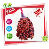 China free samples wholesales colorful plastic head wet cotton mop on sale