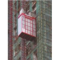 Wholesale 200kg Loading Capacity Construction Hoist , Red Building Material Hoist from china suppliers