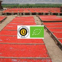 Wholesale Certificate Organic Goji berries Wholesale 180grain/50gram from china suppliers