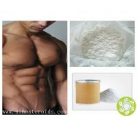 Wholesale Anabolic Steroid Raw Hormone Testosterone Enanthate Powder for muscle growth from china suppliers