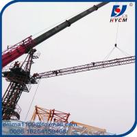 Wholesale Mini Luffing Crane D2520 6T Load Capacity with Remote Control from china suppliers