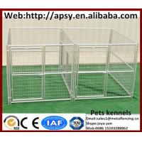 Quality Popular 10'x10'x6' dog run kennels with roofs 2 sections round tube pets cages strong animals breeding fence panels for sale