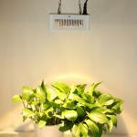 Custom White Greenhouse Cree Led Plant Grow Lights High Lumen