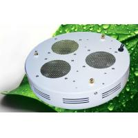 Wholesale OEM 220V 50 W LED Grow Lights RGB Waterproof 7000K Epistar Chip from china suppliers