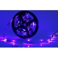 Wholesale Home Use 24w Purple SMD 3528 LED Strip Tape 120 Degree High Brightness from china suppliers
