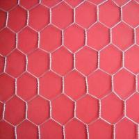 Wholesale Anping Hexagonal Wire Mesh, Used as Light Fencing for Chicken Poultry and Farms from china suppliers