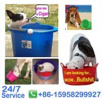 Wholesale OEM and ODM colorful flexible plastic basket - BN6007-15L Garden tools storage buckets from china suppliers