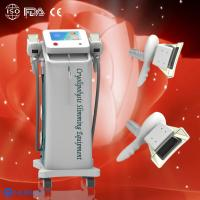 Wholesale Two Cryolipolysis handles Cryolipolysis fat freeze slimming machine to do fat reduction from china suppliers