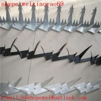 Wholesale PVC coated wall spikes/fence spikes/anti climb spikes/security spikes/spikes for fences/fence top spikes from china suppliers