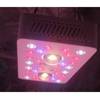 Buy cheap LED Grow Lighs 205W(UV/IR) full-cycle growing from seedling to flower from wholesalers