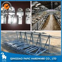 Wholesale Automatic Releasing Locking Feed Barriers / Dairy Cow Headlock Device from china suppliers