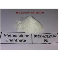 Wholesale High Purity Muscle Building Steroids Methenolone Enanthate Bodybuilding 303-42-4 from china suppliers